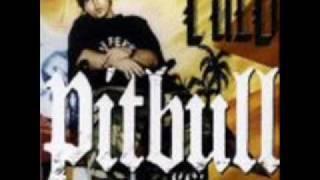 The Anthem PitBull Ft. Lil John