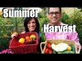 Organic Garden Summer Harvest - Let's Get Dinner!