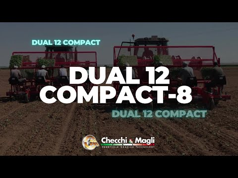 CHECCHI & MAGLI - DUAL 12 COMPACT-8 SPAIN