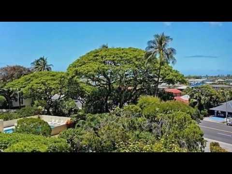 Real estate for sale in Honolulu Hawaii - MLS# 201711400