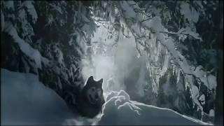 Сплин - Волк