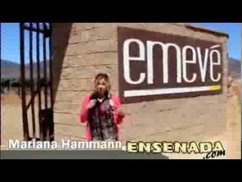 La Vendimia Ensenada with Maniana Hammann