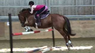 I love my horse. Jumping Lesson 06-05-11