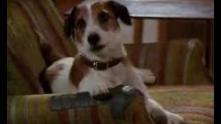 Frasier - Death And The Dog