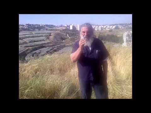 Meet Nature & More grower Ron Dotan