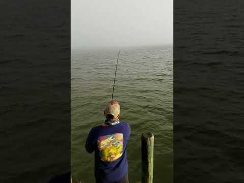 Fishing In San Leon