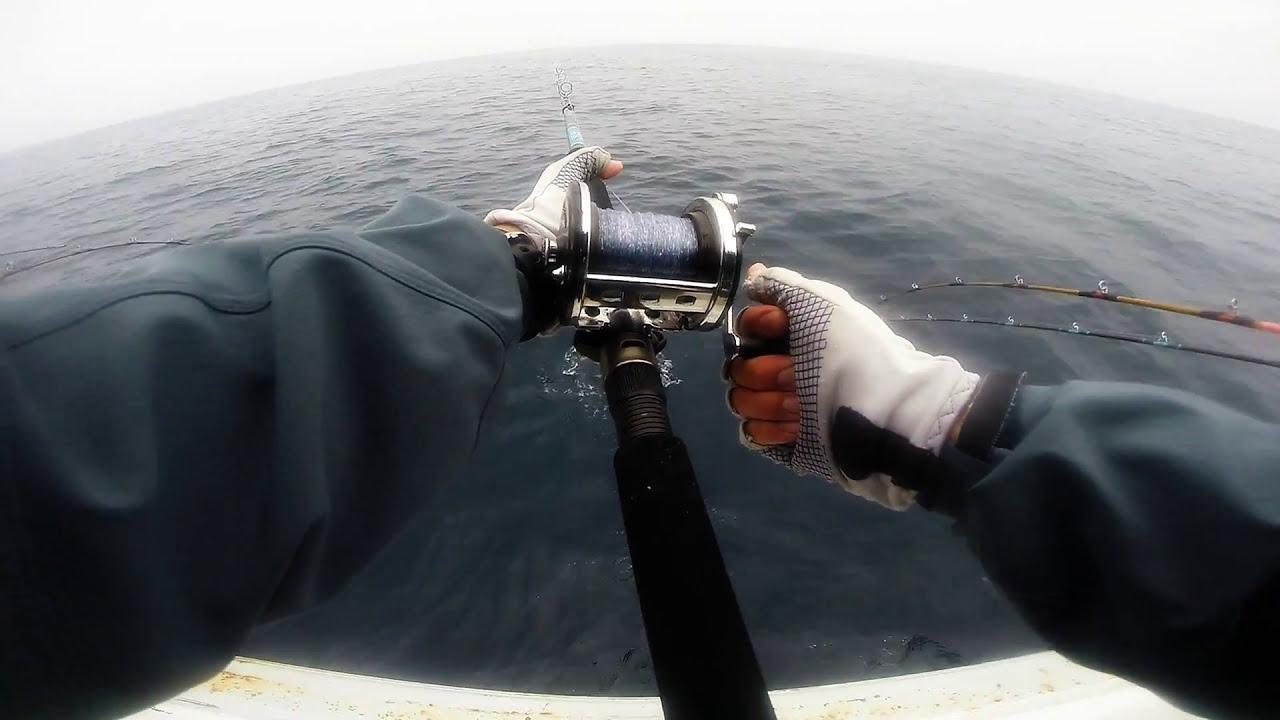 The gentleman sportfishing channel islands oxnard ca for Oxnard fish count