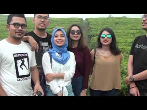 Indahnya Kebun Teh Sidamanik Simalungun, Pilihan Wisata Anak Muda