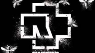 Rammstein - Pussy (with Lyrics)