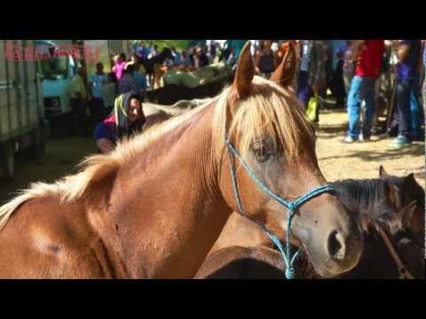 Feira Tradicional - Portela de Alvite 2012