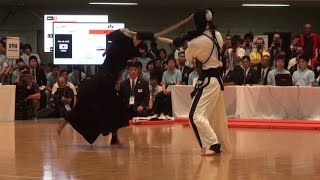 World Kendo Championships Men's Individual  ~ All Ippons ~