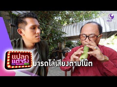 เครื่องดนตรีผลไม้ ราชบุรี, มนุษย์วานรทวาย พม่า - วันที่ 26 Jan 2019