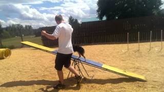 K9 Goodlife Agility -victoria Dog Training