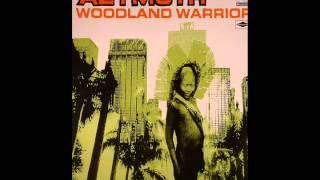 Play Woodland Warrrior