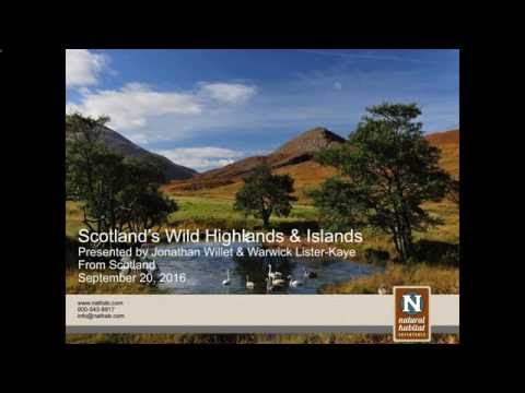 Webinar | Discover the Wild Side Of Scotland