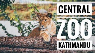 Popular Videos - Central Zoo & Wildlife
