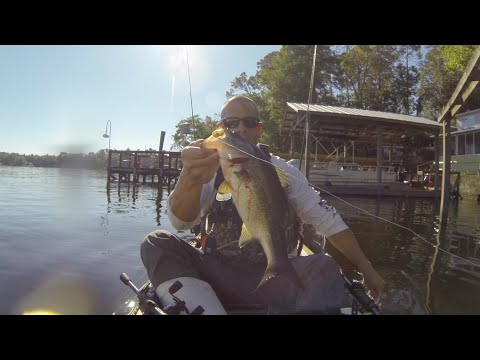Lake Talquin Bass Fishing