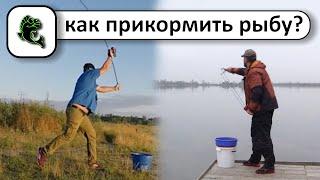 Способы прикармливания рыбы на рыбалке с флэт метод фидер