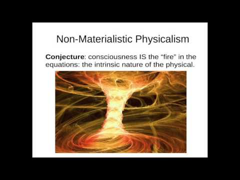 """Schrödinger's Neurons: David Pearce at the """"2016 Science of Consciousness"""" conference in Tucson"""