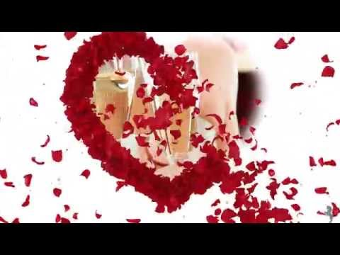 Roses Wedding - Proshow STYLEPACK