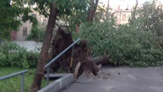 Москва последствия урагана марьина роща 13 июля 2016
