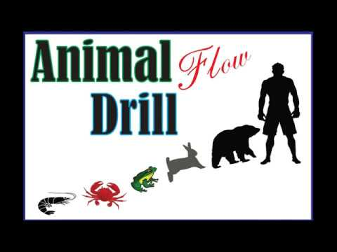 Animal drill flow for grappling and BJJ