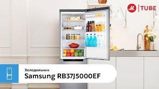 Обзор холодильника с нижней морозильной камерой Samsung RB37J5000EF от эксперта «М.Видео»