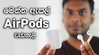 Apple AirPods Sinhala Review