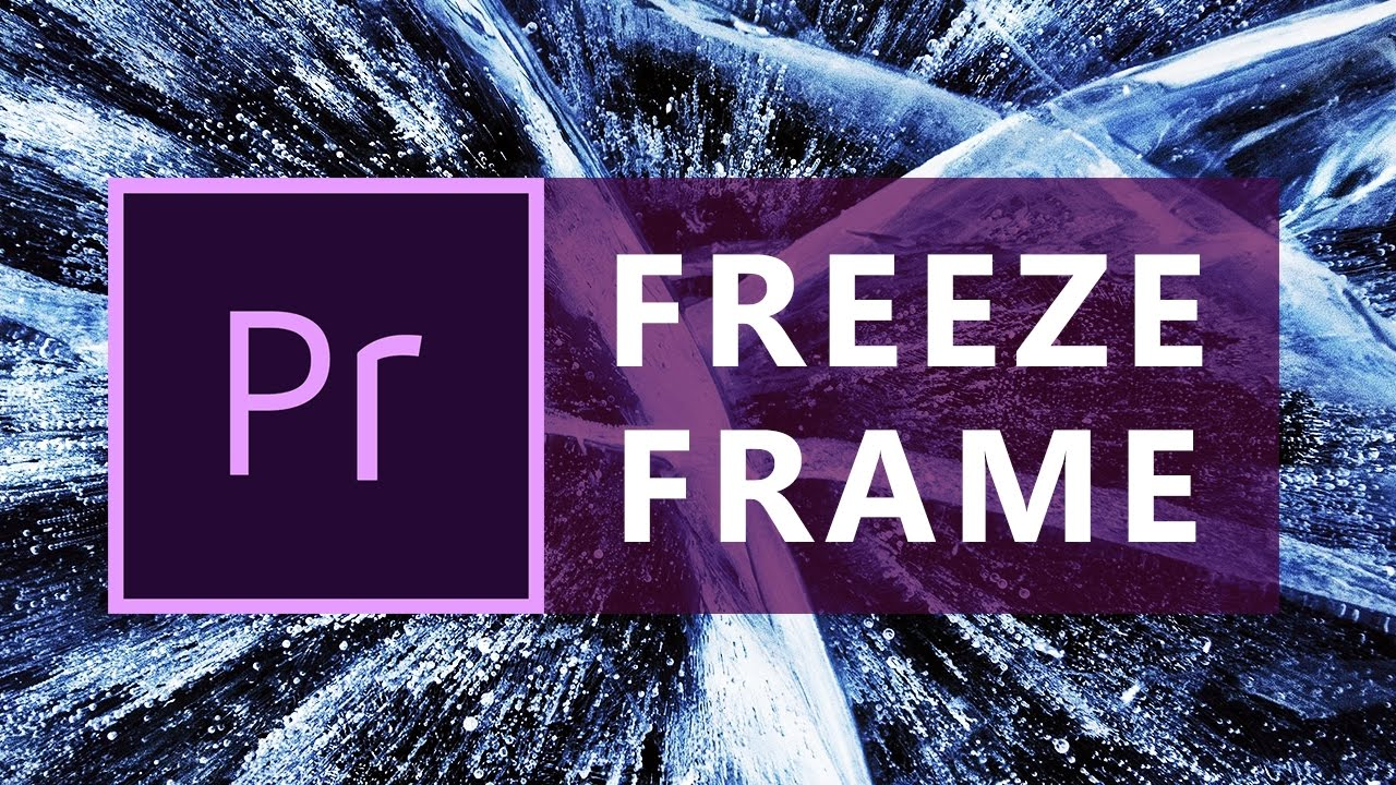 Premiere Pro: How to Freeze Frame / Frame Hold | Pause Video Effect ...