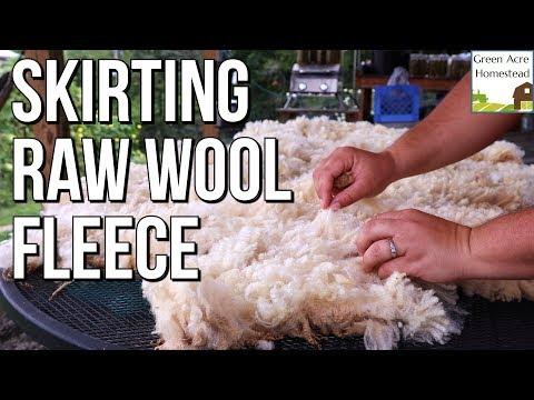 How To Skirt A Raw Wool Sheep Fleece | Cleaning Wool