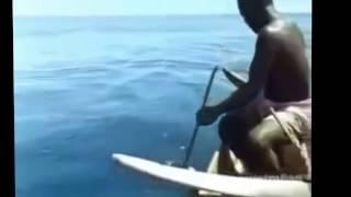 Pêche requin à l'ancienne #incroyable