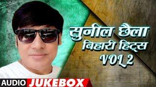 BEST OF SUNIL CHHAILA BIHARI BHOJPURI HITS VOL.2 | BHOJPURI AUDIO SONGS JUKEBOX |  HamaarBhojpuri