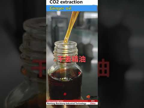 Supercritical CO2 extraction of ginger oil/Ginger oil extraction method