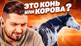 HARD PLAY СМОТРИТ ТЕМНАЯ СТОРОНА 12 МИНУТ СМЕХА ИЮЛЬ 2019 ЛУЧШИЕ ПРИКОЛЫ
