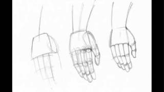 All comments on How to draw anime hands - YouTube