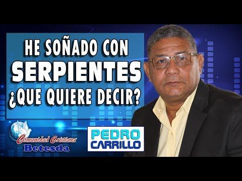 """N° 088 """"He soñado con serpientes ¿Qué quiere decir?"""" Pastor Pedro Carrillo"""