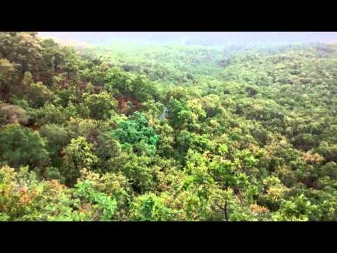 Where to visit at pachmarhi