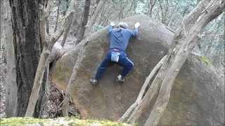 くろんど園地のForestエリアで、ウェンディ裏側の楽しいスラブを攀じっ...