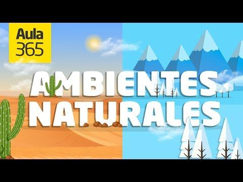 ¿Cuáles Son Los Ambientes Naturales De América? | Videos Educativos Para Niños