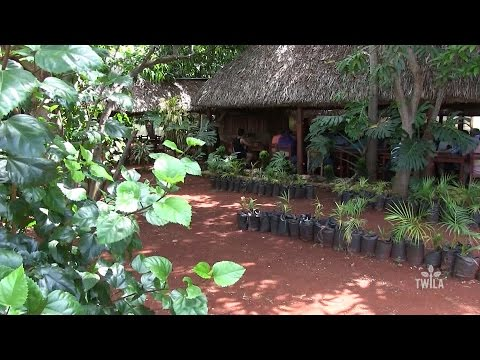Connecting with Cuba -- Urban Agriculture