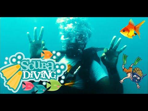 scuba-diving-|-scuba-diving-in-goa-|-scuba-diving-in-2-mins-|-goa-scuba-diving-|saikanth-photography