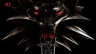 Прохождение The Witcher 1 #1 Защита Каэр Морхена
