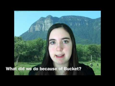 Bucket: A Documentary