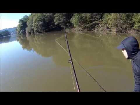 Fishing At San Pablo Reservoir - 3/24/2019