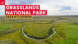 Exploring GRASSLANDS National Park and the BIG MUDDY BADLANDS!
