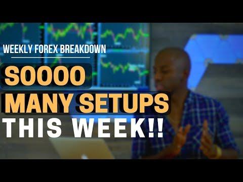forex Fundamental Analysis | Too Many Setups!!!