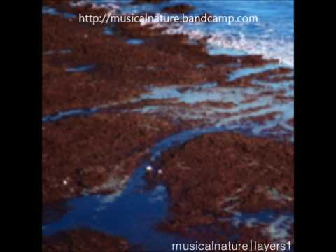 Layers I by musical nature