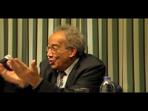 "Galal Amin analyzes Egypt's ""bleak"" economic situation"