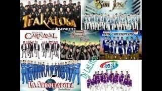 Bandas Mix - Banda Ms, La Arrolladora, La Adictiva, Carnaval