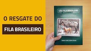 O resgate do Fila Brasileiro